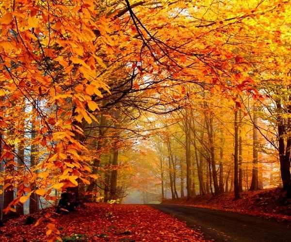 Paysages automne page 7 - Paysage d automne dessin ...