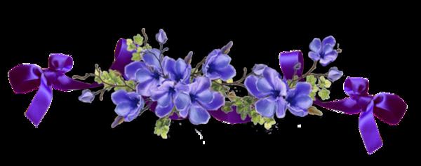 Bs Fleurs Violettes