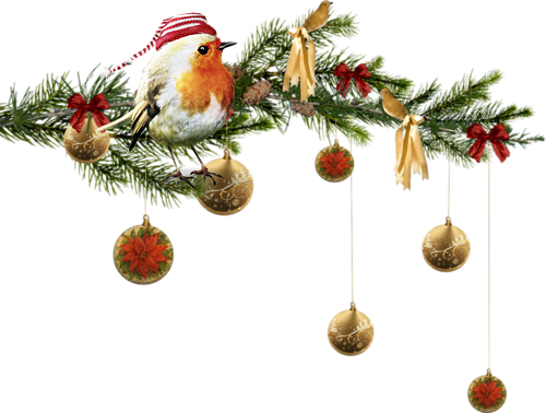 Boîte De Cadeau Le Jour De Noël Clip Art: TUBE DECO OISEAUX HIVER NOEL