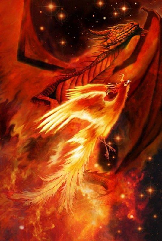 le phoenix oiseau l gendaire
