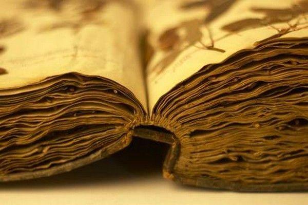 Page Livre Ancien Vieux Livres Livre Ancien