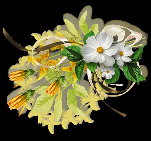 Fleurs blanches printemps et autres - Fleurs des champs blanches ...