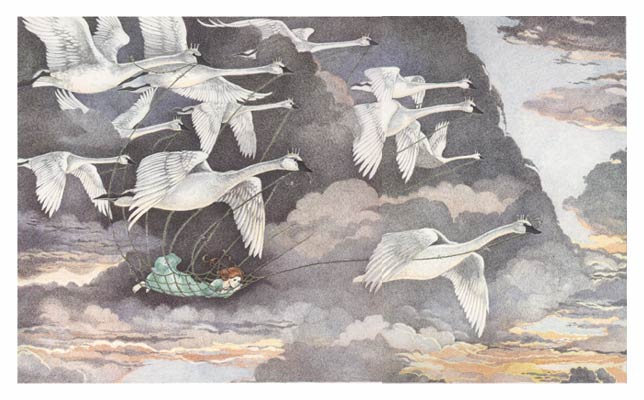 Les Cygnes Sauvages De Andersen