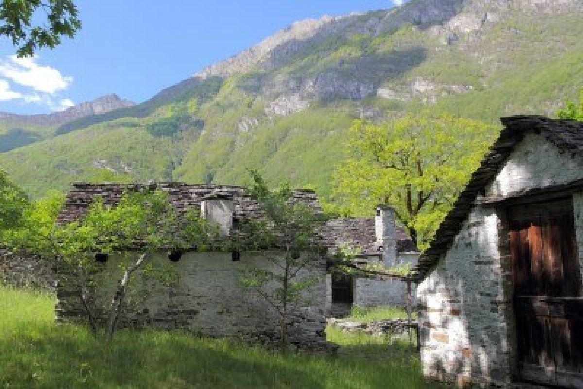 La maison sur la montagne de c cile sauvage for Distri center la montagne